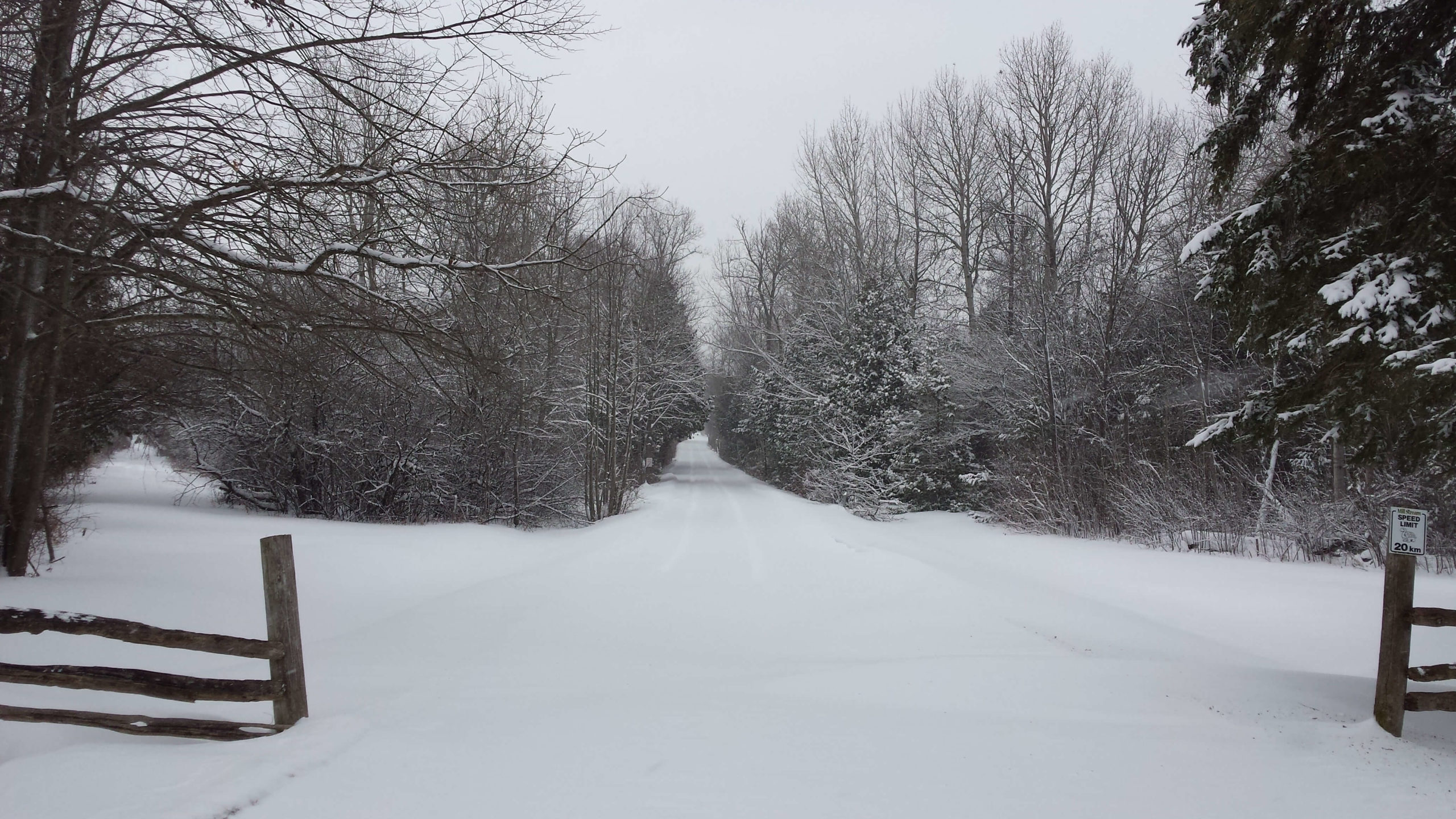 Mill Stream Bible Camp Driveway Winter